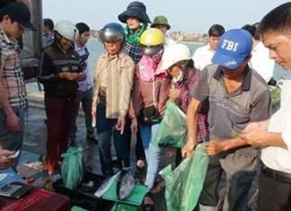 Người dân Quảng Bình mua cá biển ở chợ Đồng Hới.