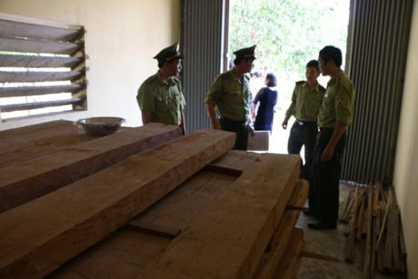 Kho chứa gỗ